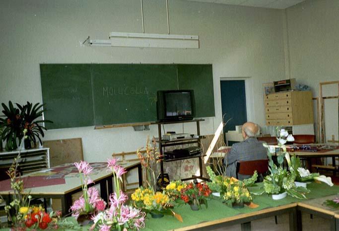doolendag 2003  13vk